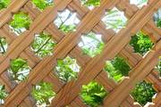Деревянные шпалеры