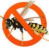 Абсолют гель для уничтожения насекомых (тараканы,  осы,  мухи,  муравьи)